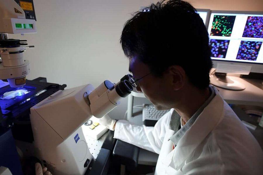 UW–Madison researcher Yoshi Kawaoka looking through microscope
